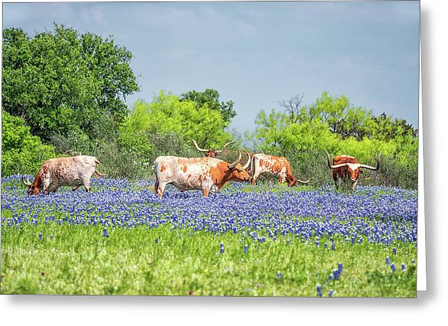 Pure Texas Greeting Card by Victor Culpepper