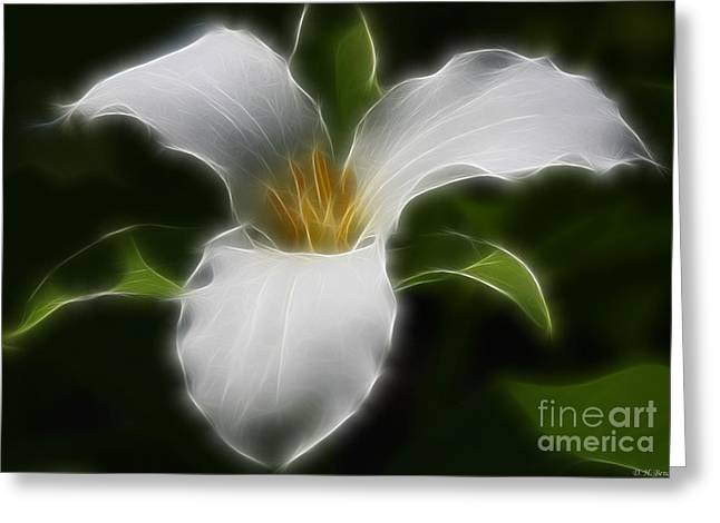 Pure White Trillium Greeting Card
