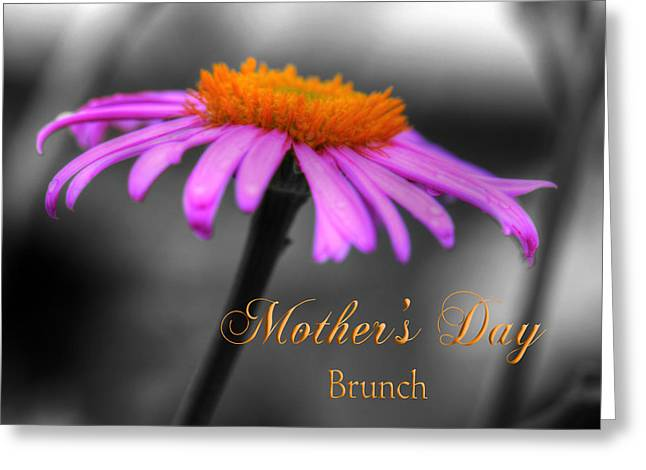 Greeting Card featuring the photograph Purple And Orange Coneflower Mothers Day Brunch by Shelley Neff