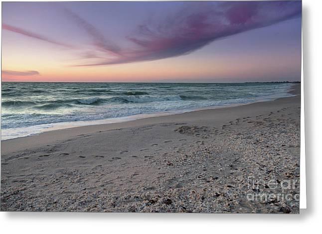 Purple Beach Greeting Card