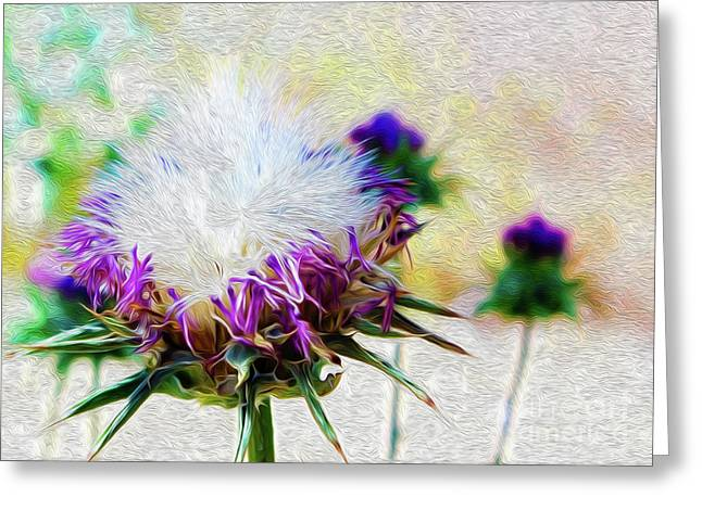 Purple Chaparral  Greeting Card