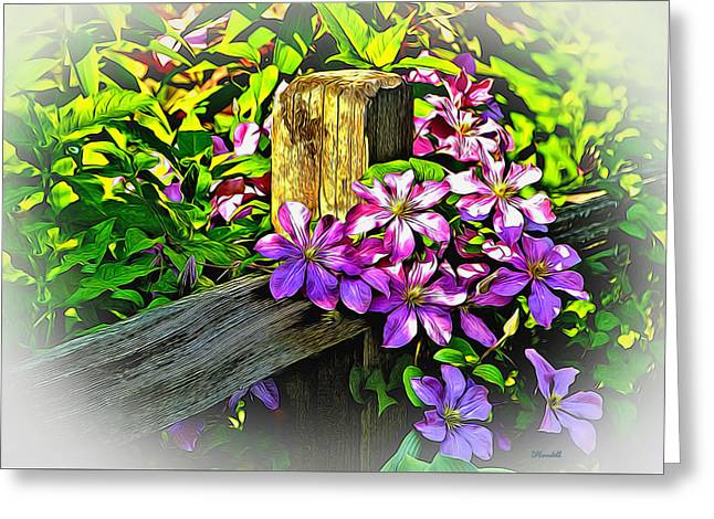 Purple Clematis On Split Rail Fence Greeting Card by Dennis Lundell