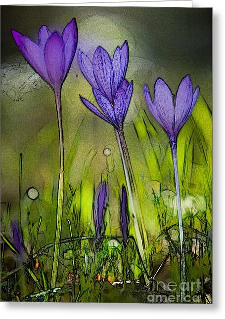 Greeting Card featuring the photograph Purple Crocus Flowers by Jean Bernard Roussilhe