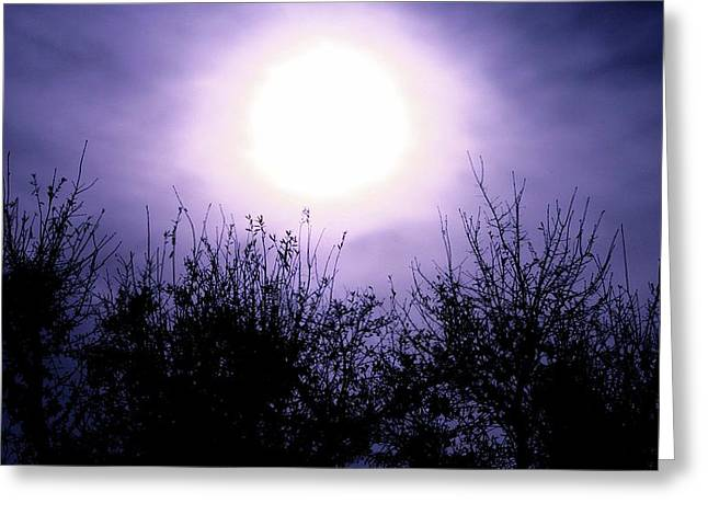 Purple Eclipse Greeting Card