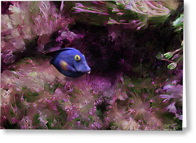 Purple Fish In Pink Grass Greeting Card