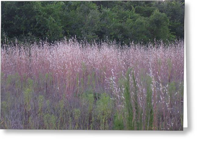 Purple Florida Grass Horizontal Greeting Card