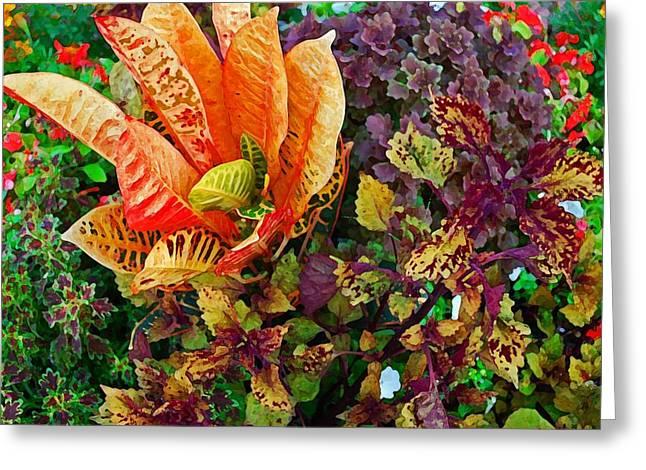 Purple Flowers Greeting Card by Michael Thomas