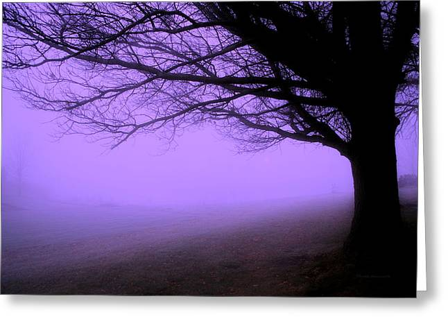 Purple Haze December Fog By The Sleepy Pin Oak Pa Greeting Card by Thomas Woolworth