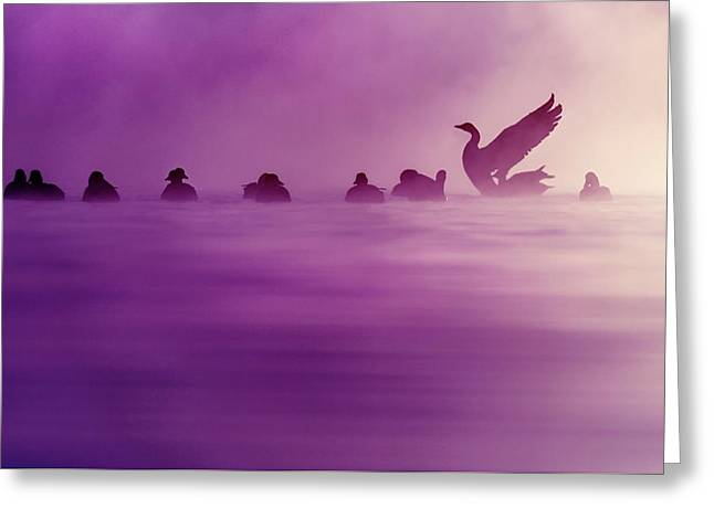 Purple Haze Greeting Card by Roeselien Raimond