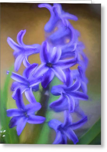 Purple Hyacinths Digital Art Greeting Card by Terry DeLuco