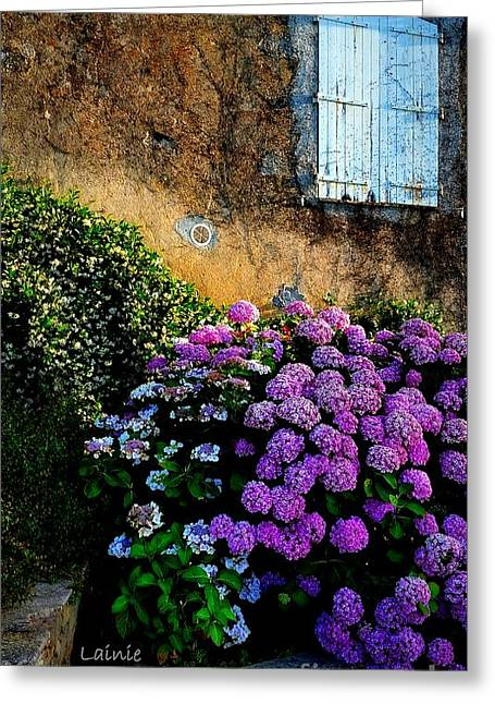 Purple Hydrangea Greeting Card by Lainie Wrightson
