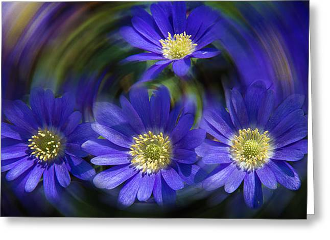 Purple In Nature Greeting Card