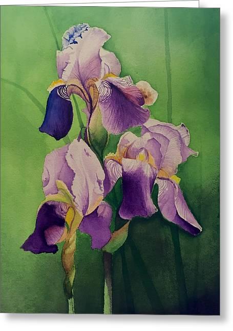 Purple Iris' Greeting Card