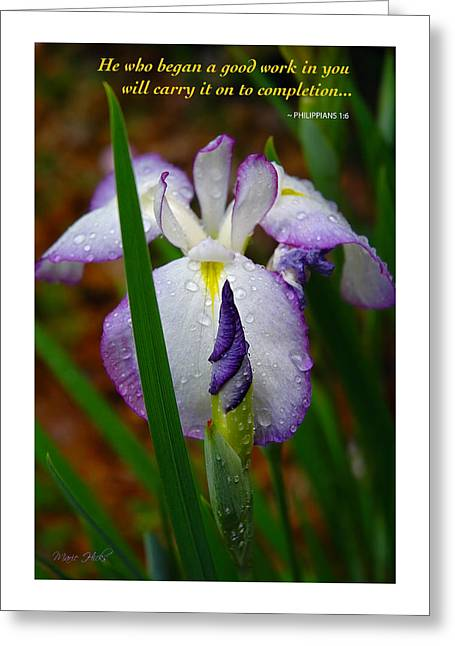 Purple Iris In Morning Dew Greeting Card by Marie Hicks