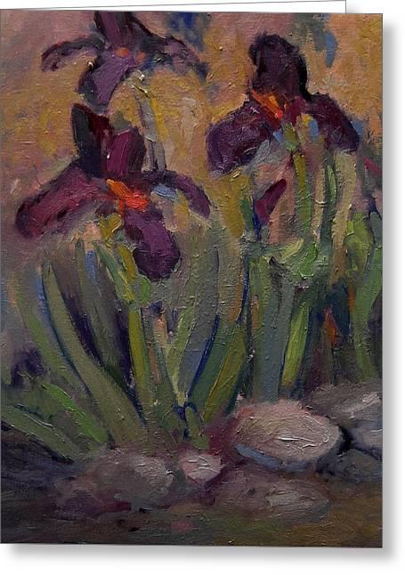 Purple Iris In Shade Greeting Card