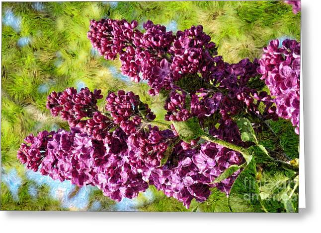 Purple Lilac 1 Greeting Card by Jean Bernard Roussilhe