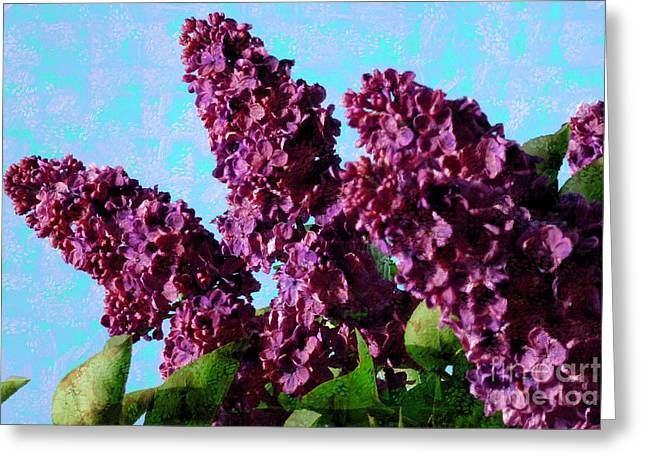 Purple Lilac 2 Greeting Card by Jean Bernard Roussilhe