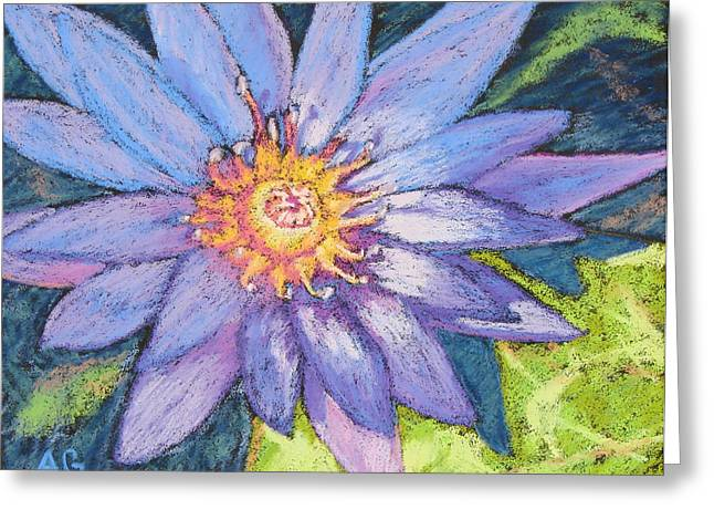 Print On Acrylic Pastels Greeting Cards - Purple Lotus Greeting Card by Abbie Groves