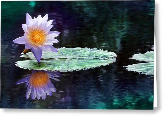 Purple Lotus Reflection Greeting Card by Lori Deiter