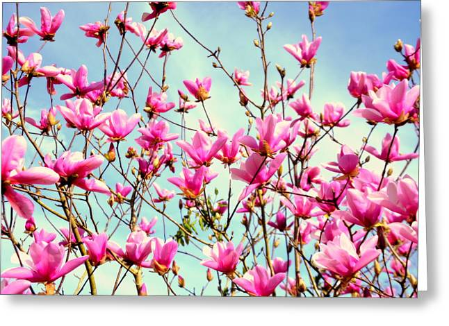 Purple Magnolia Tree Greeting Card by Lisa Wooten