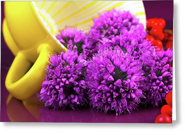 Purple Onion Flower Macro Greeting Card