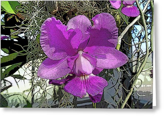 Purple Orchid Greeting Card by Adina Campbell