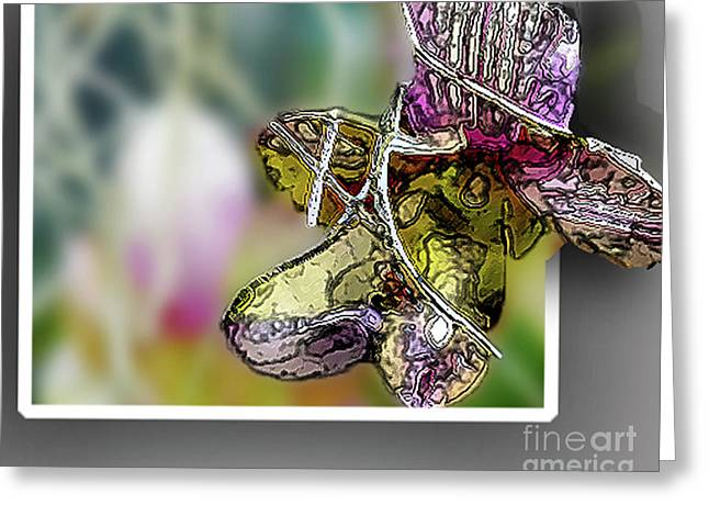 Purple Orchid Pop Greeting Card