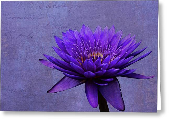 Greeting Card featuring the photograph Purple Passion by Judy Vincent