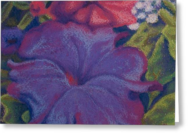 Purple Petunia Greeting Card