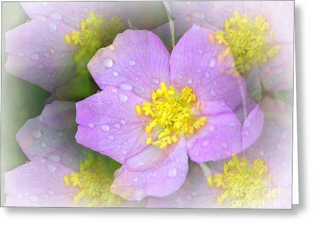 Purple Prism Greeting Card by Marty Koch