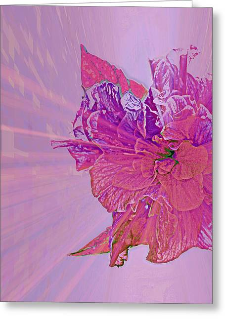 Purple Rays Of Happiness Greeting Card