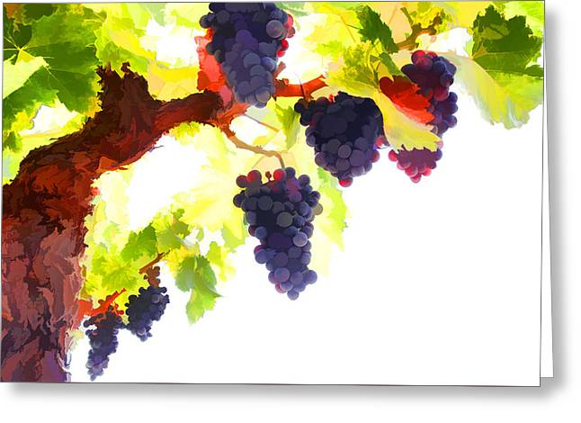Purple Red Grapes With Green Leaves On The Vine Greeting Card