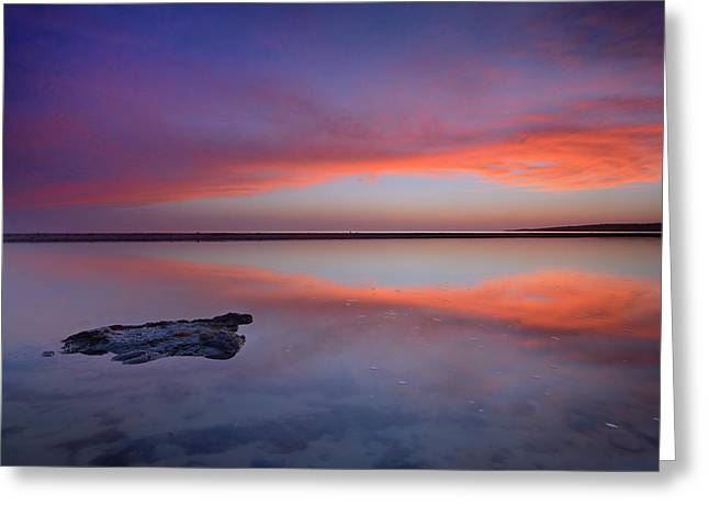 Purple Reflections At The Sea Greeting Card