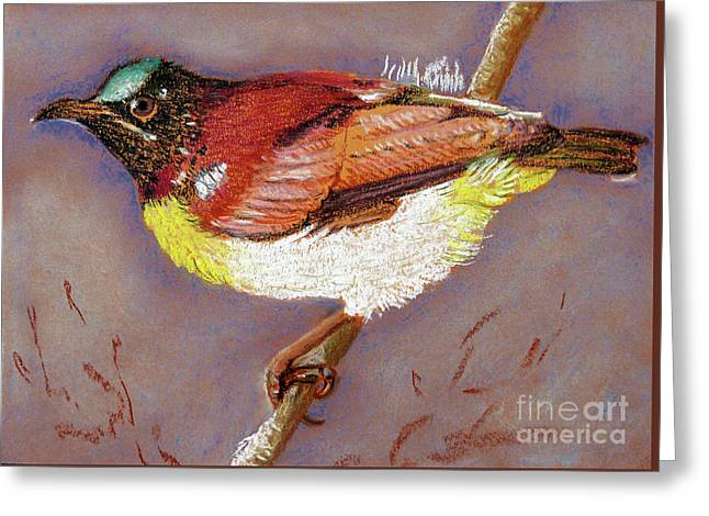 Purple Rumped Sunbird Greeting Card