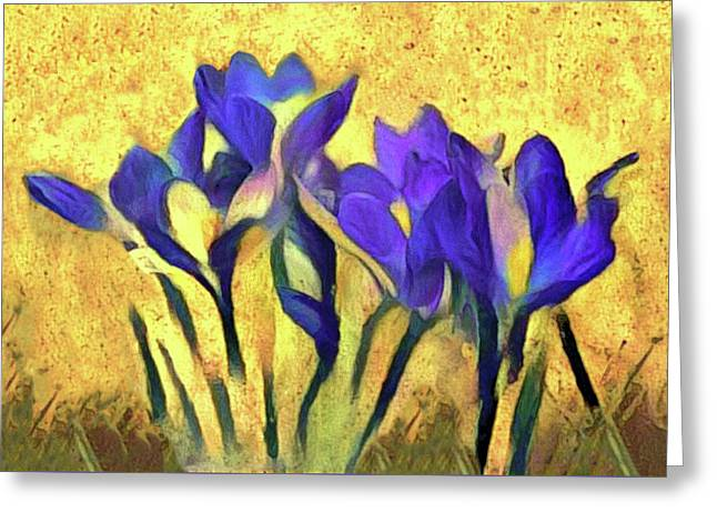 Purple Spring Crocus Flowers Greeting Card
