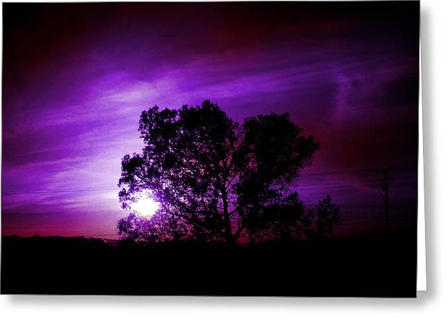 Purple Sunset Greeting Card by Robert Ball