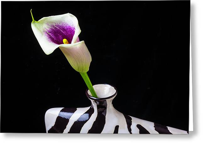 Purple White Calla In Vase Greeting Card by Garry Gay