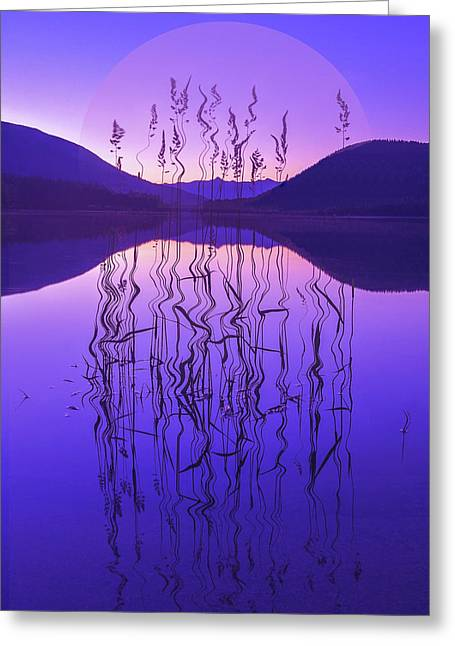 Purple Zen Greeting Card by Joy McAdams
