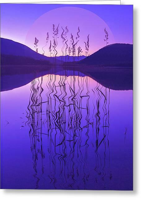 Purple Zen Greeting Card