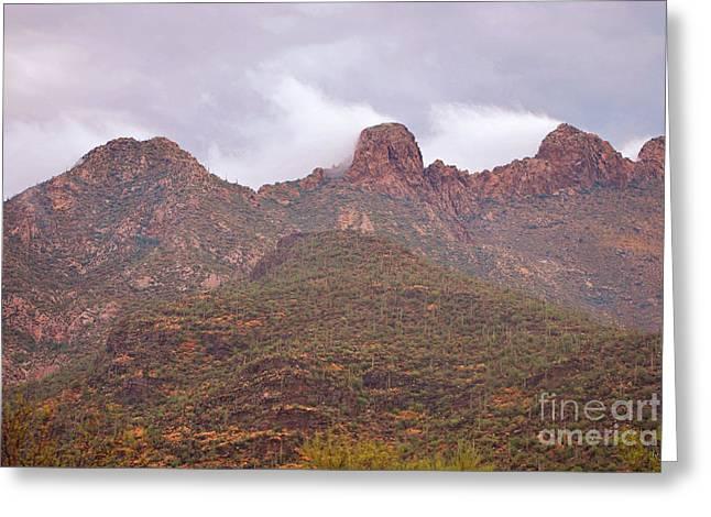 Pusch Ridge Tucson Arizona Greeting Card by Donna Greene