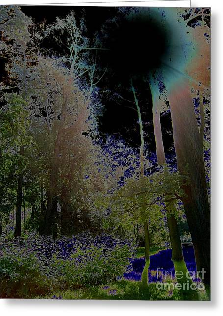 Greeting Card featuring the photograph Pushkin Treescape by Robert D McBain
