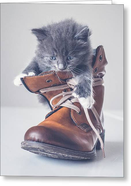 Puss In A Boots Greeting Card