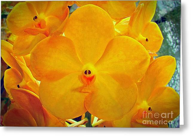 Put On A Happy Face Yellow Orchids Greeting Card by Sue Melvin