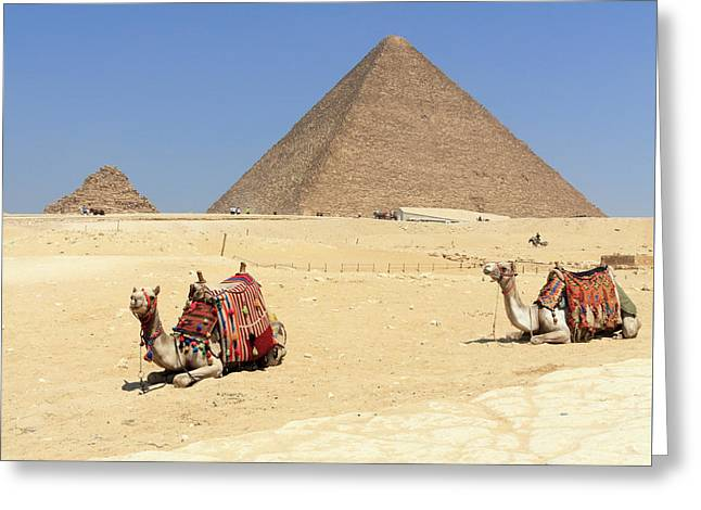 Greeting Card featuring the photograph Pyramids Of Giza by Silvia Bruno