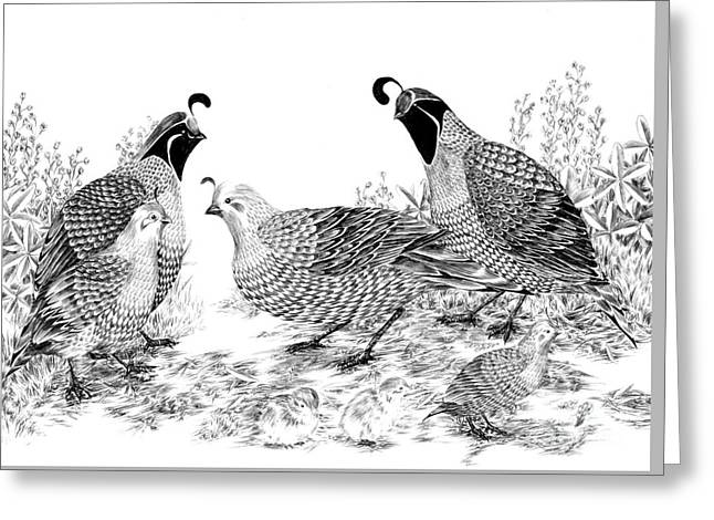 Quail Family Reunion Greeting Card