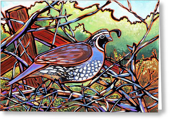 Nadi Spencer Greeting Cards - Quail Greeting Card by Nadi Spencer