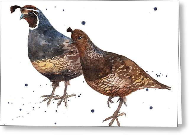 Quail Painting Greeting Card by Alison Fennell