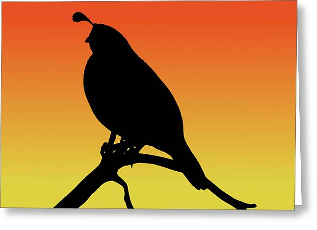 Quail Silhouette At Sunset Greeting Card