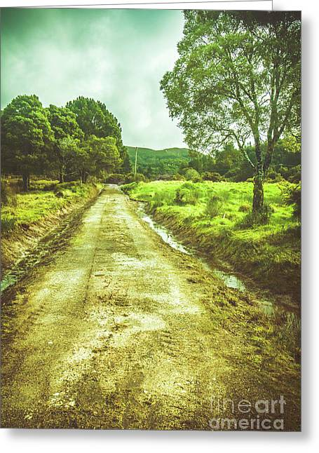 Quaint Tasmanian Dirt Road Landscape Greeting Card by Jorgo Photography - Wall Art Gallery