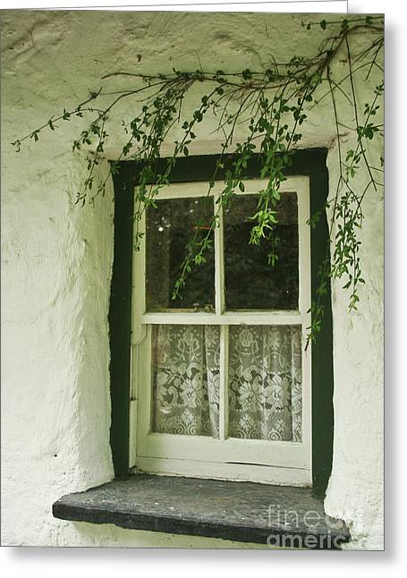 Quaint Window In Ireland Greeting Card